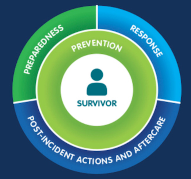 Image for Mobile Guide: Managing Sexual Violence Against Aid Workers